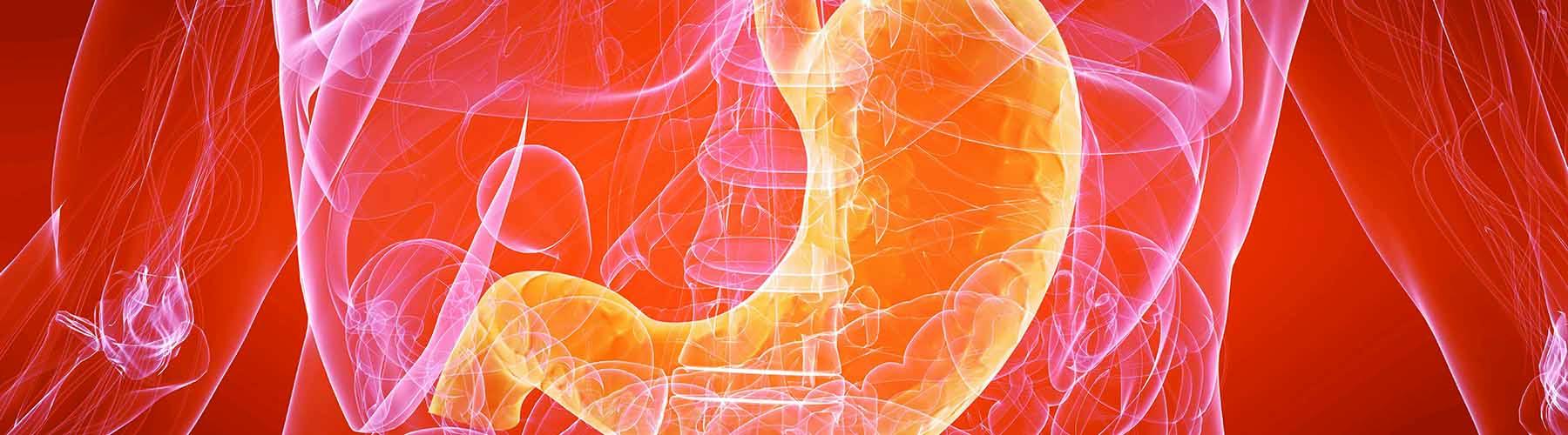 Course Image Trastornos del aparato digestivo, metabolismo y sistema endocrino