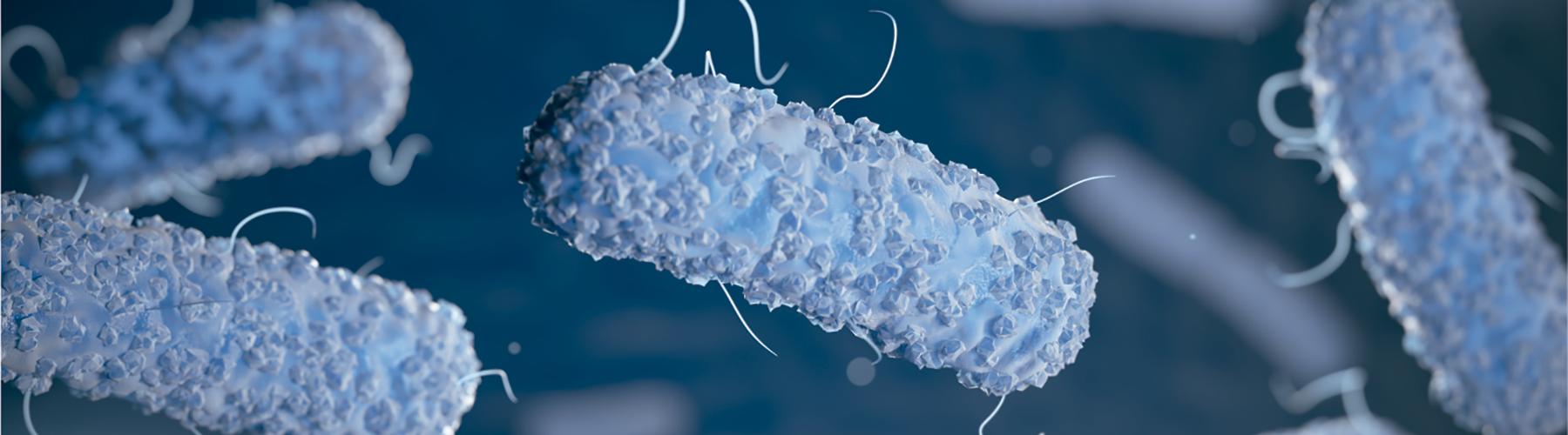 Course Image Utilidad de los probióticos en el mantenimiento de la salud